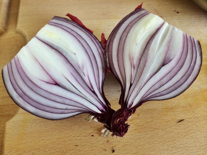 onions_stock